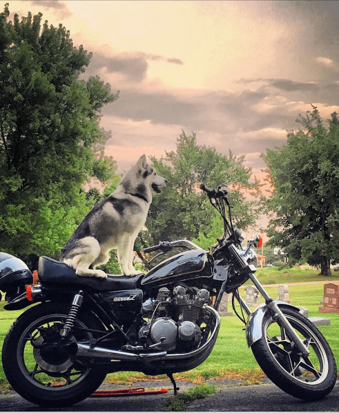 """Time to ride."" (Photo: @itstravels) best road trip"
