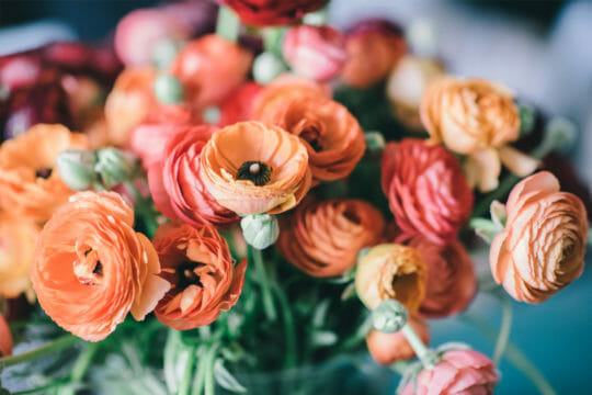 Send flowers with Roadie's same-day shipping